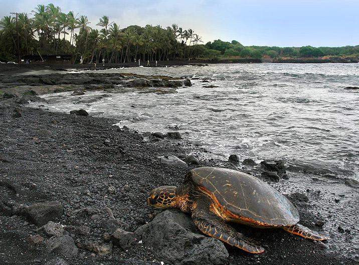 Praias em Big Island