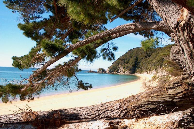 Quais praias conhecer na Nova Zelândia