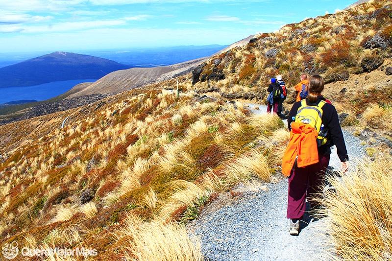 Trilhas e trekking na Nova Zelândia