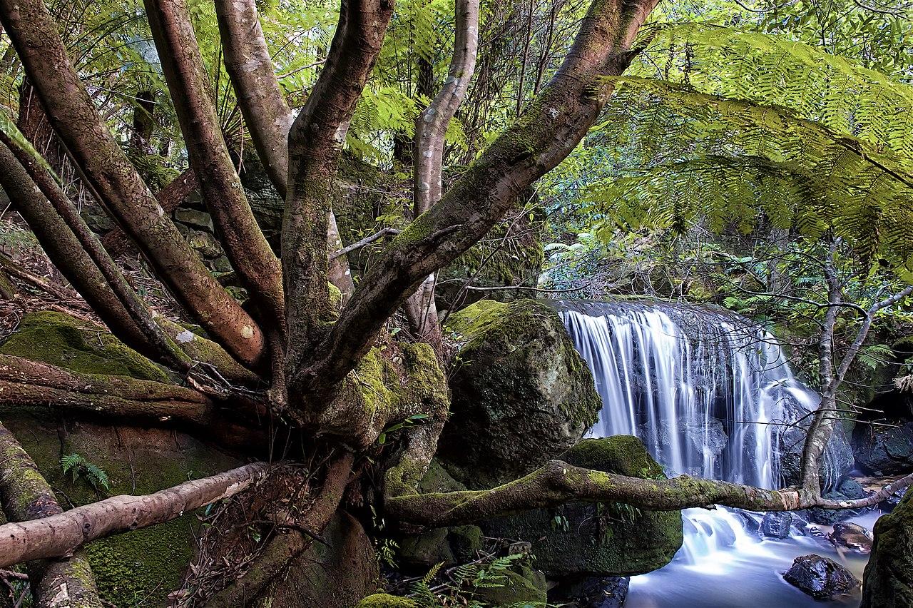 cachoeira bluen mountains