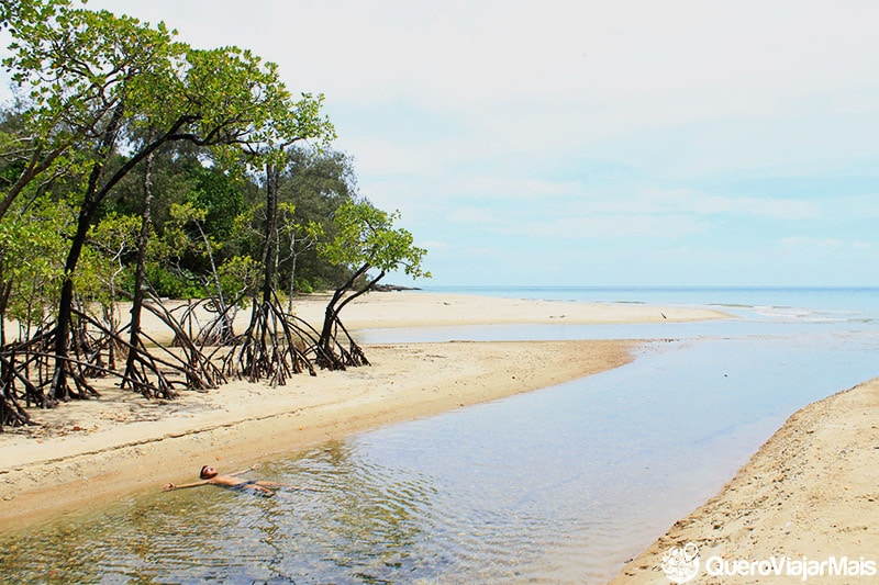 Floresta tropical em Cape Tribulation