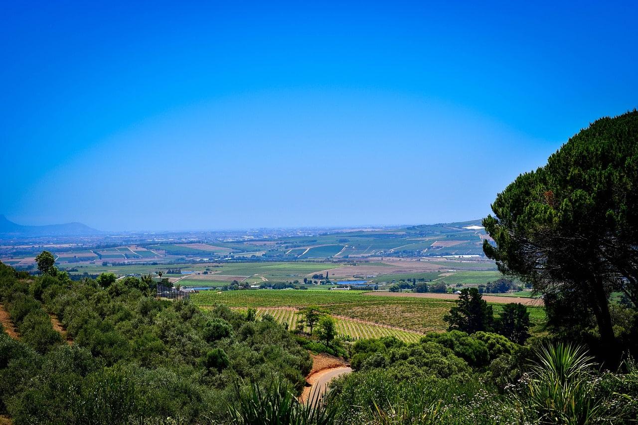 tudo sobre África do sul