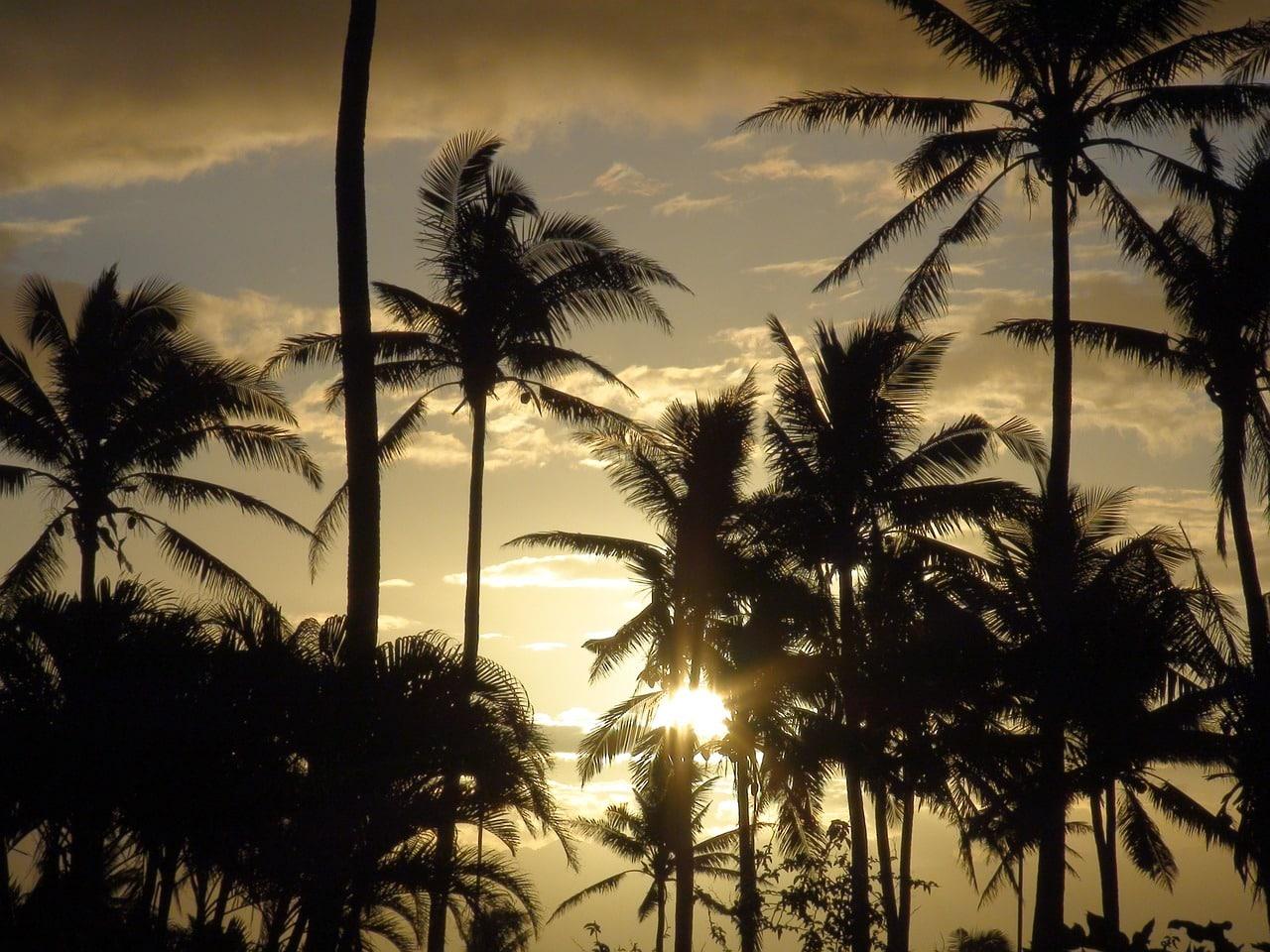 destinos imperdíveis fiji