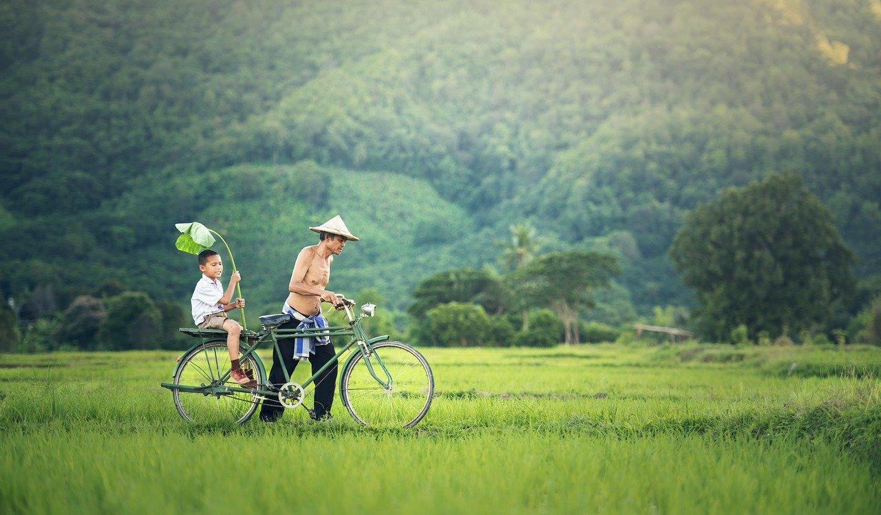 passeios camboja