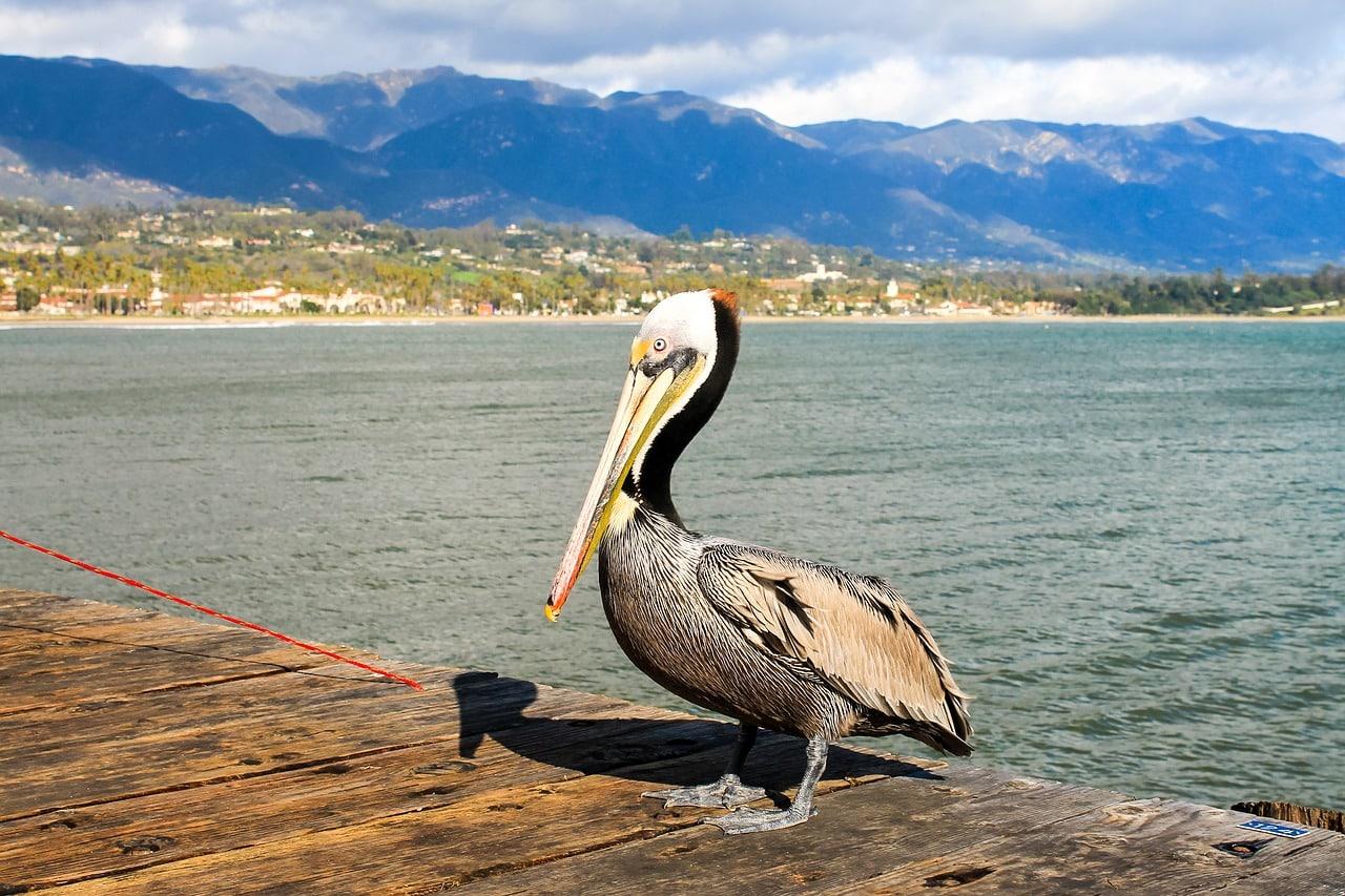 melhores pontos turísticos da california