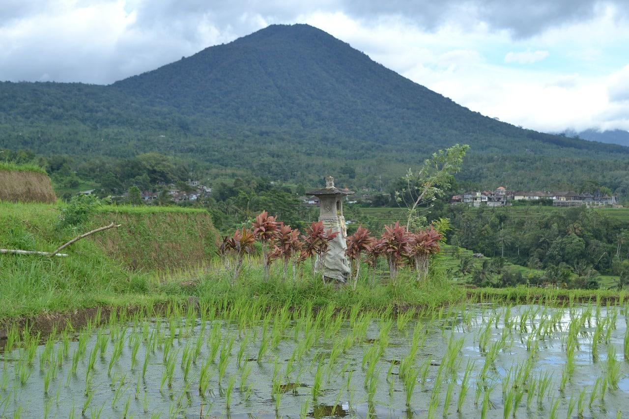 fotos da indonesia