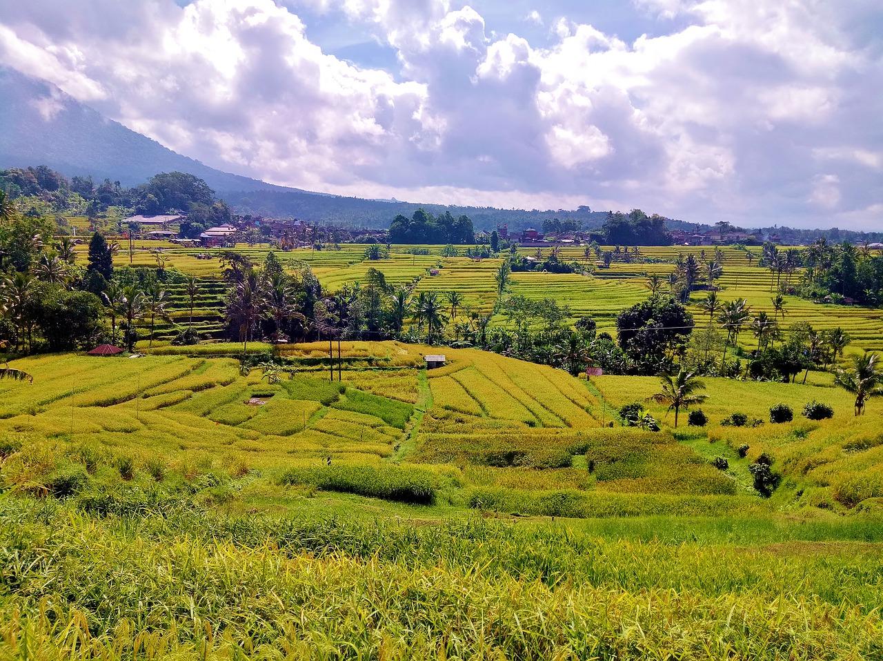cidades da indonesia
