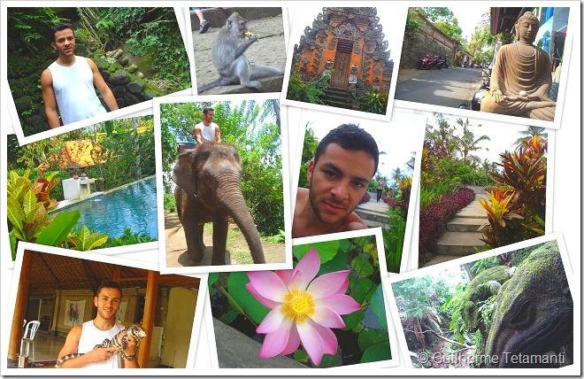 Guia de viagem em Bali / Indonésia