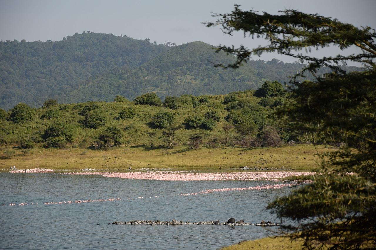lugares para visitar tanzânia