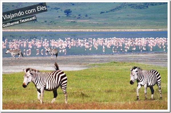 safari-na-tanzania-ngorongoro-crater