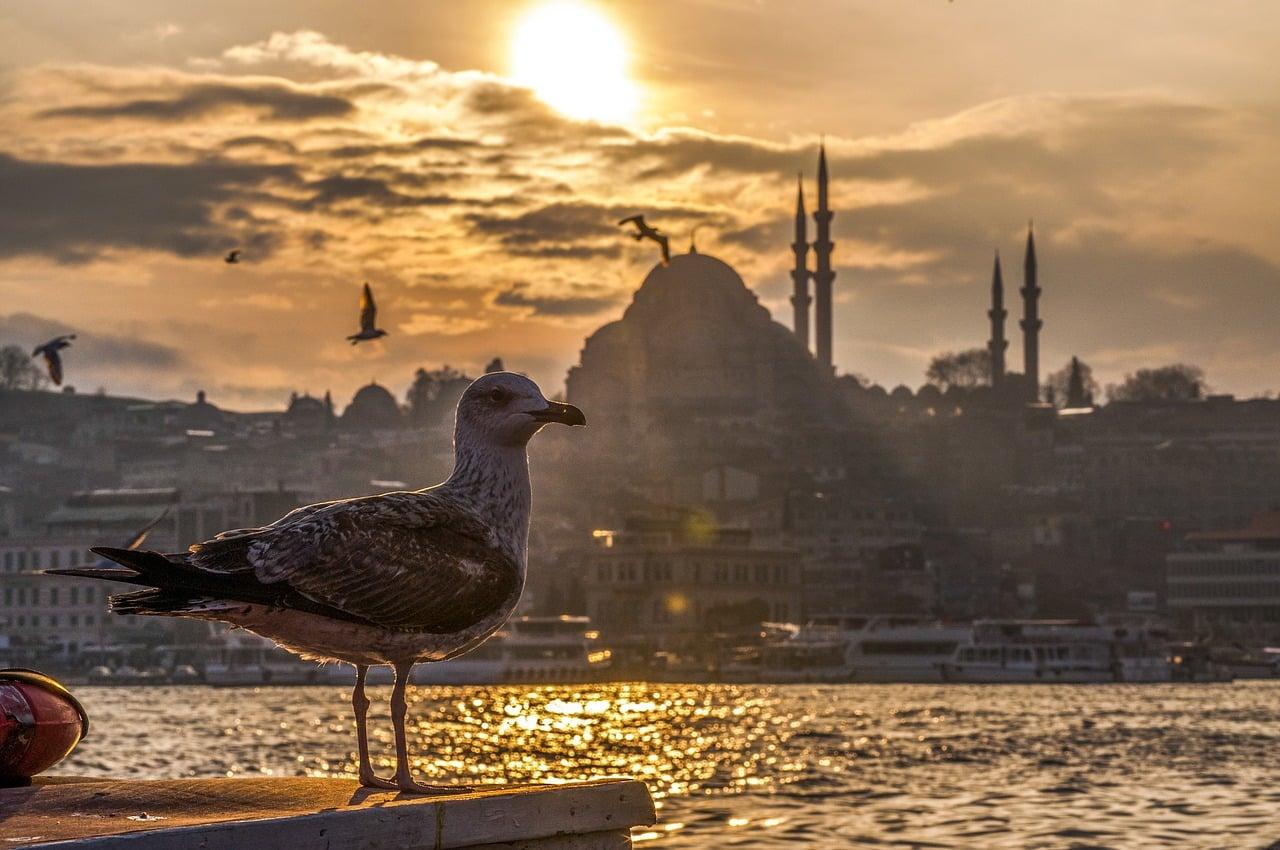 O que fazer em um dia em Istambul?