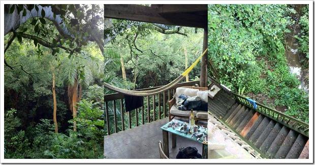 hawaii-turismo-casa-da-arvore-maui