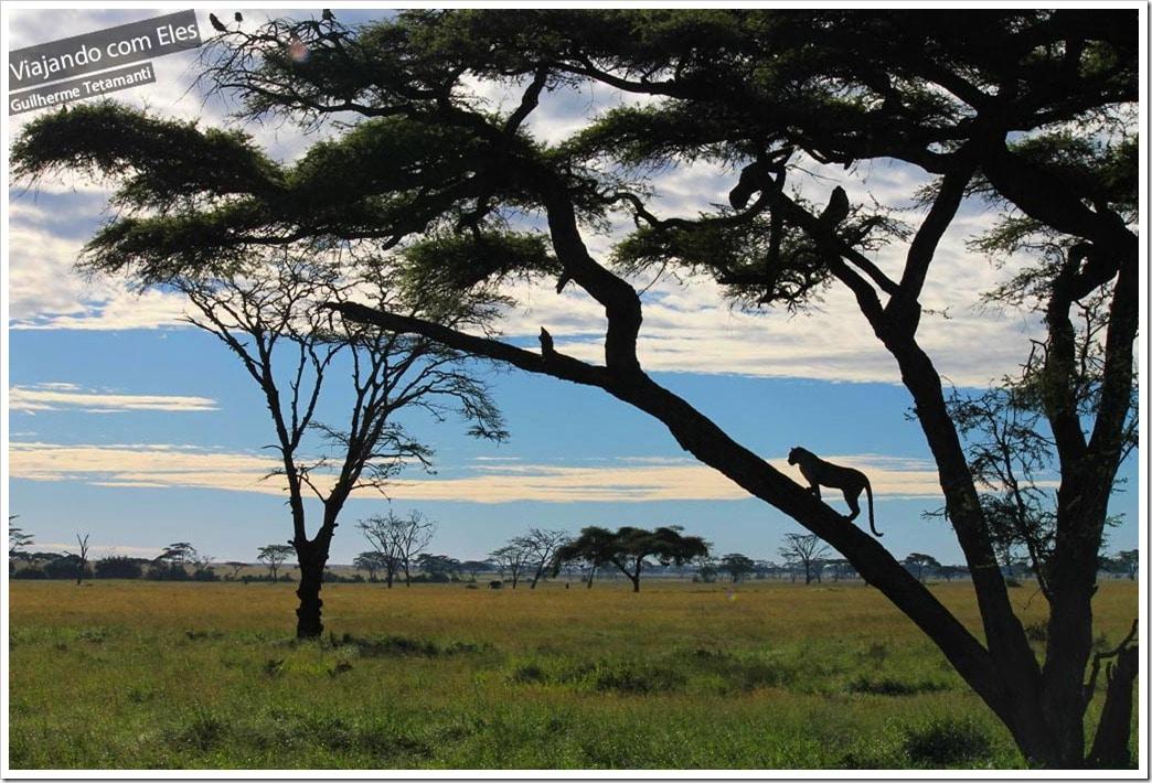 Pôr do sol na África