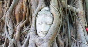 Wat Phra Mahthat.