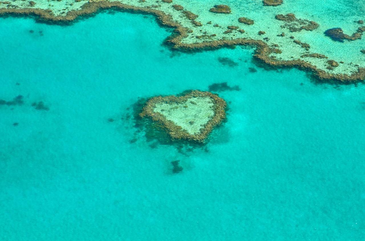 onde mergulhar na austrália