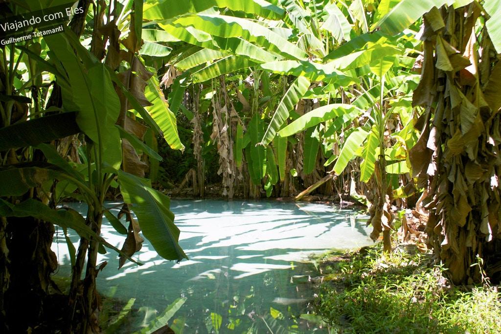 Fervedouros do Jalapão - Glorinha