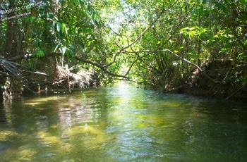Rio do fervedouro d Glorinha.