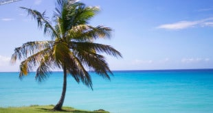 Miami Beach, a praia mais bonita de Barbados.