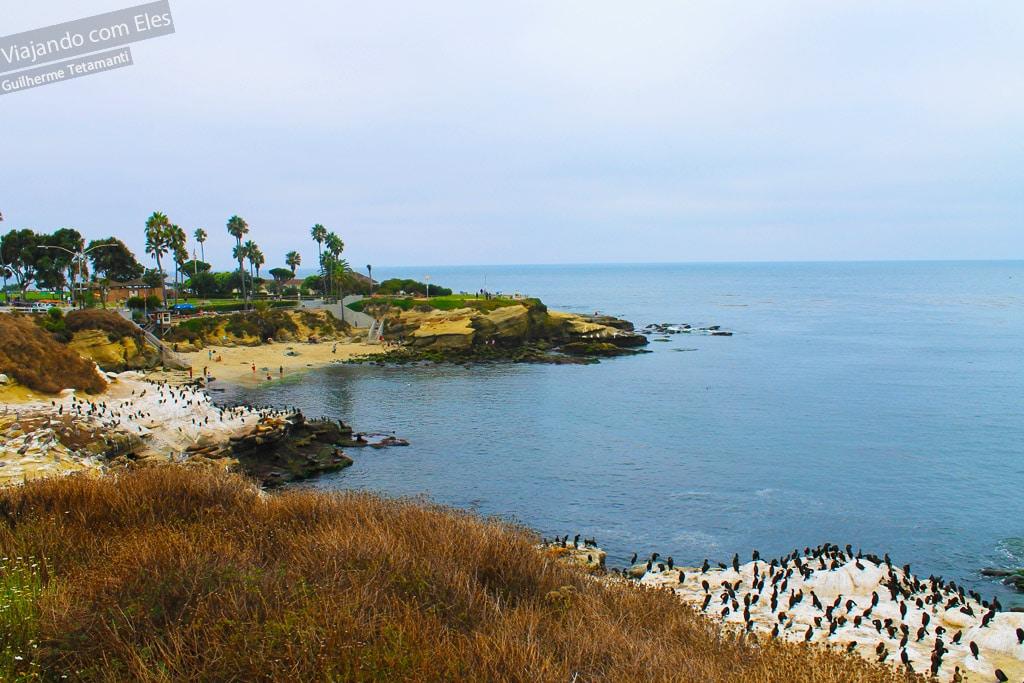 La Jolla é uma das lindas praias de San Diego.