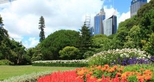 Guia completo sobre bairros e onde ficar em Sydney
