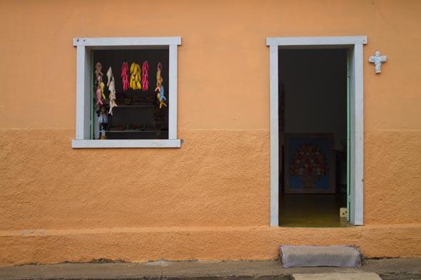 Bichinho em Minas Gerais
