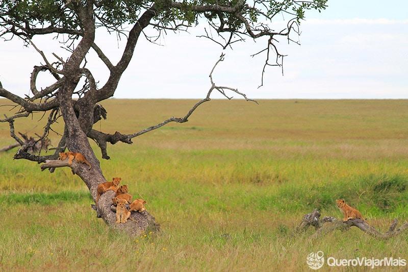 Turismo na Tanzânia o que ver