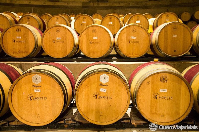 Vinhos chilenos bons e baratos