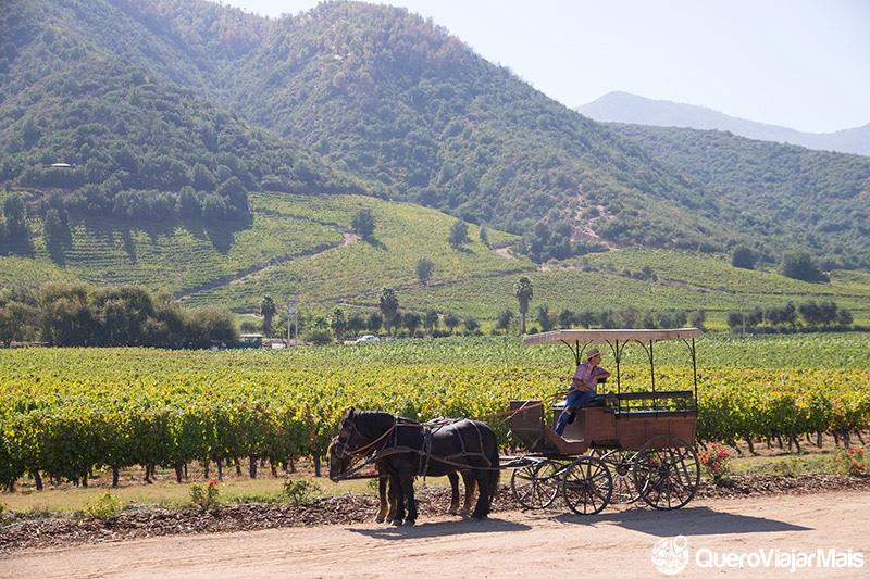 Vinícolas perto de Santiago
