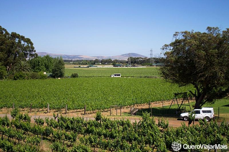 Melhores vinícolas em Cape Town