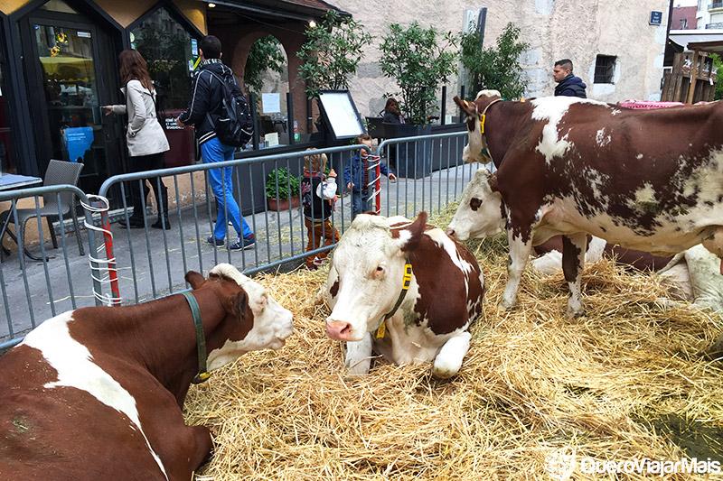Festivais em Annecy