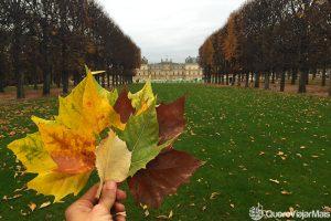 Lugares para ver em Paris