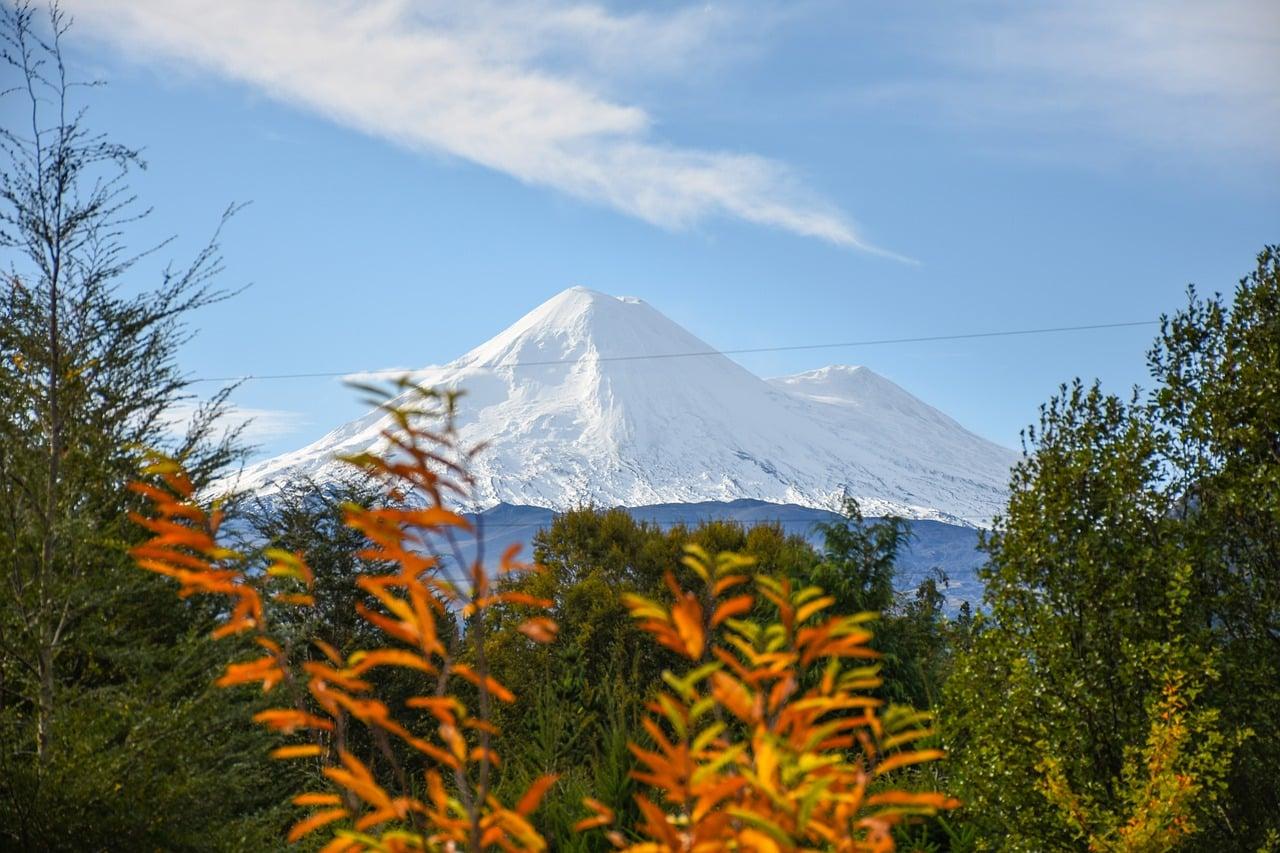 Qual valor do curso de medicina no Chile?