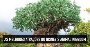 Melhores atrações do Disney's Animal Kingdom