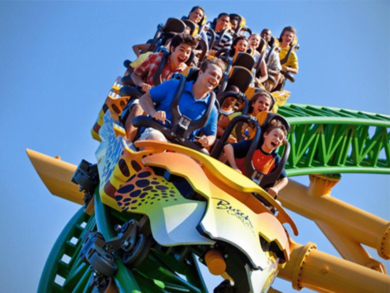 Melhores atrações do Busch Gardens Tampa