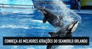 Melhores atrações do Seaworld Orlando