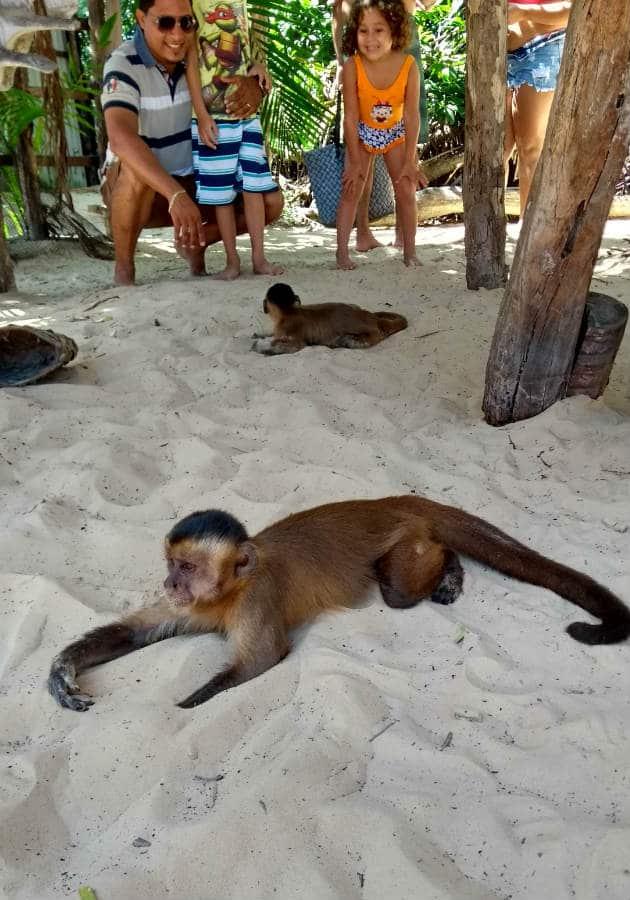 O que fazer no Maranhão? Passeio de voadeira em Vassouras