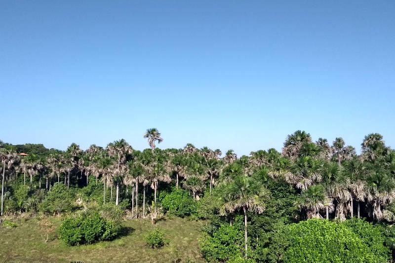 Resort em Lençóis Maranhenses