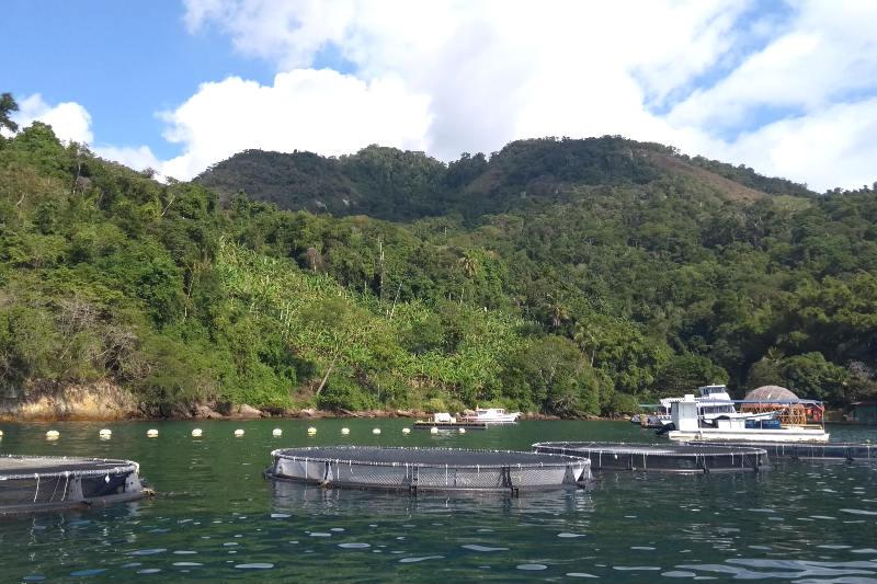 Passeio em Ilha Grande, Angra dos Reis