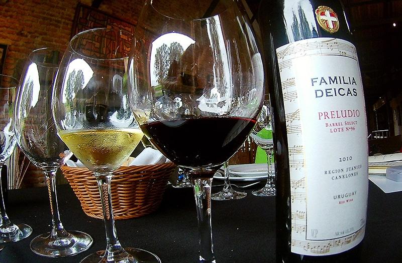 Melhores vinhos do Uruguai