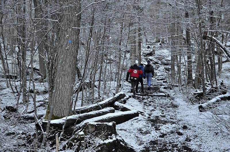 Preços das trilhas em Ushuaia