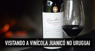 Visitar a bodega Juanicó no Uruguai