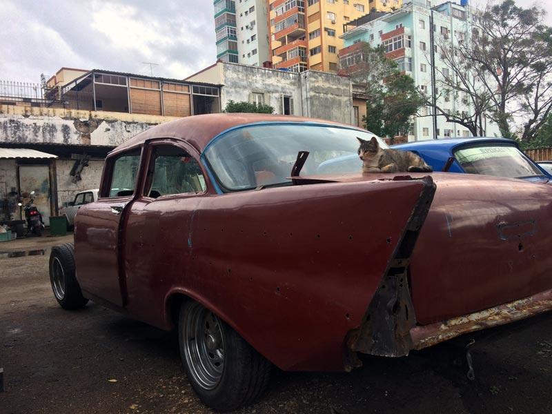 Principais informações para quem está de viagem marcada para Cuba