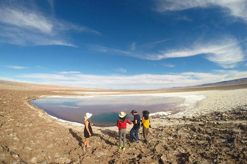 Vale a pena conhecer as Lagunas Escondidas do Atacama?