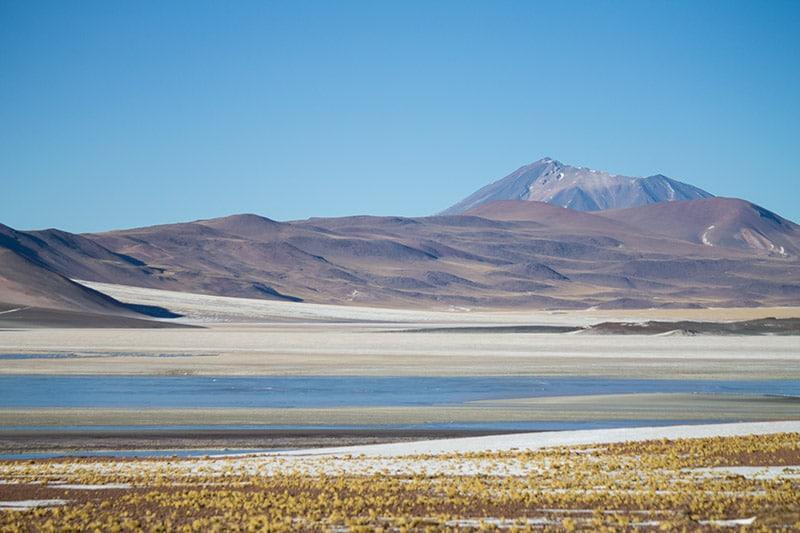 O que comer no Atacama