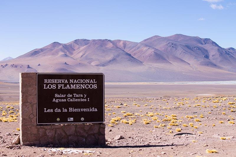 Reserva Nacional dos Flamingos, no Atacama