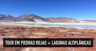 Tour Lagunas Altiplânicas + Piedras Rojas, Atacama