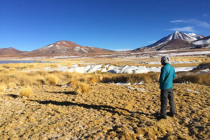Tour em Piedras Rojas e Lagunas Altiplânicas