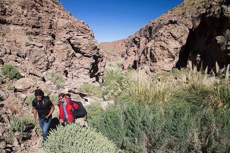 Trekking de Guatin, no Atacama
