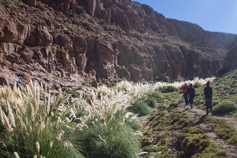 Trekking no Atacama no Vale do Guatin