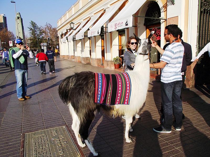 Lugares que as crianças gostam em Santiago